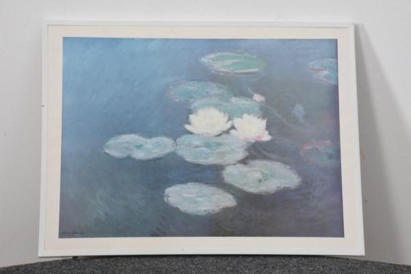Seerosen 81 x 62 cm, gebraucht